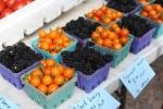 blackberries and tomatoes
