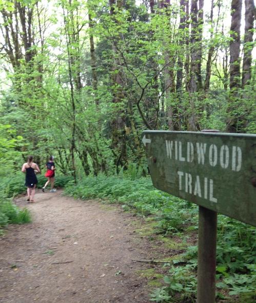 1000 Miles Wildwood