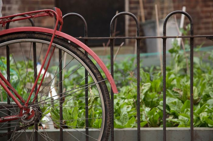 bike and garden by Anna Brones