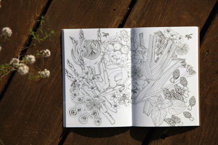 Comestible: An Indie Quarterly About Real Food